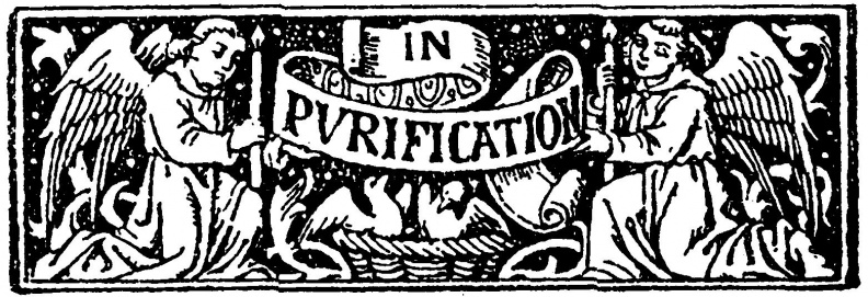 bvm-purification_184049523_o.jpg