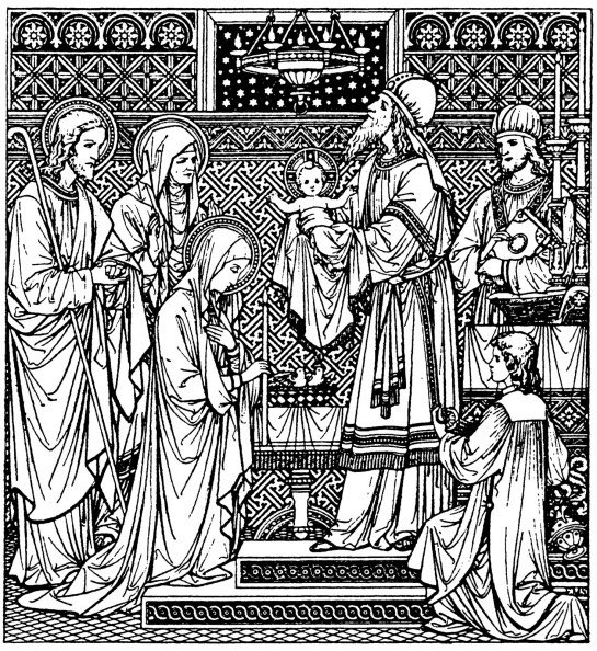 BVM-Purification-2-cen.jpg